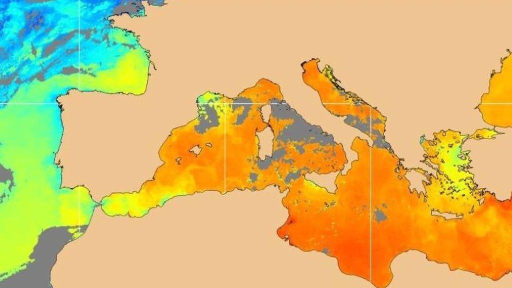 El Mediterráneo es un caldo (literal): los peligros de que esté 5ºC más caliente de lo normal