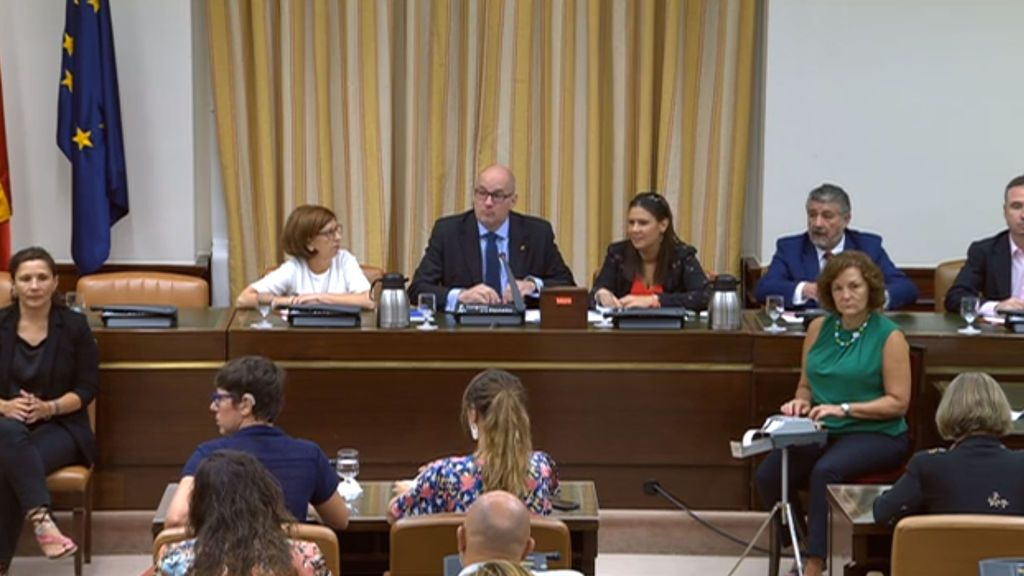 Presidencia de la Comisión Mixta Congreso-Senado para el control parlamentario de RTVE.