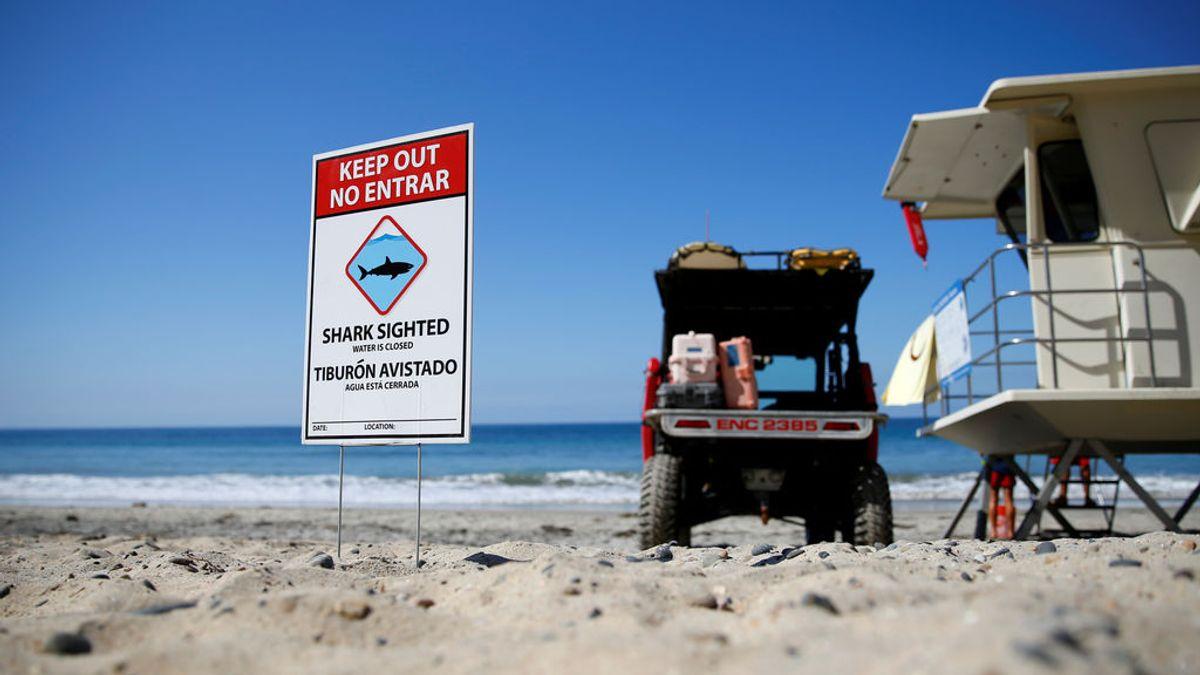 Señal de alerta de tiburones avistados en la playa de San Diego
