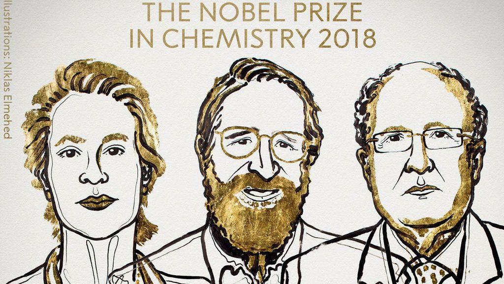 Nobel de Química para Frances H. Arnold, George P. Smith y Gregory P. Winter