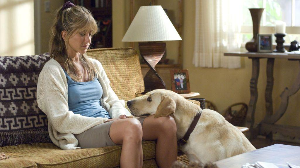 Does the dog die: la web que te avisa si muere algún perrete en la peli que vas a ver