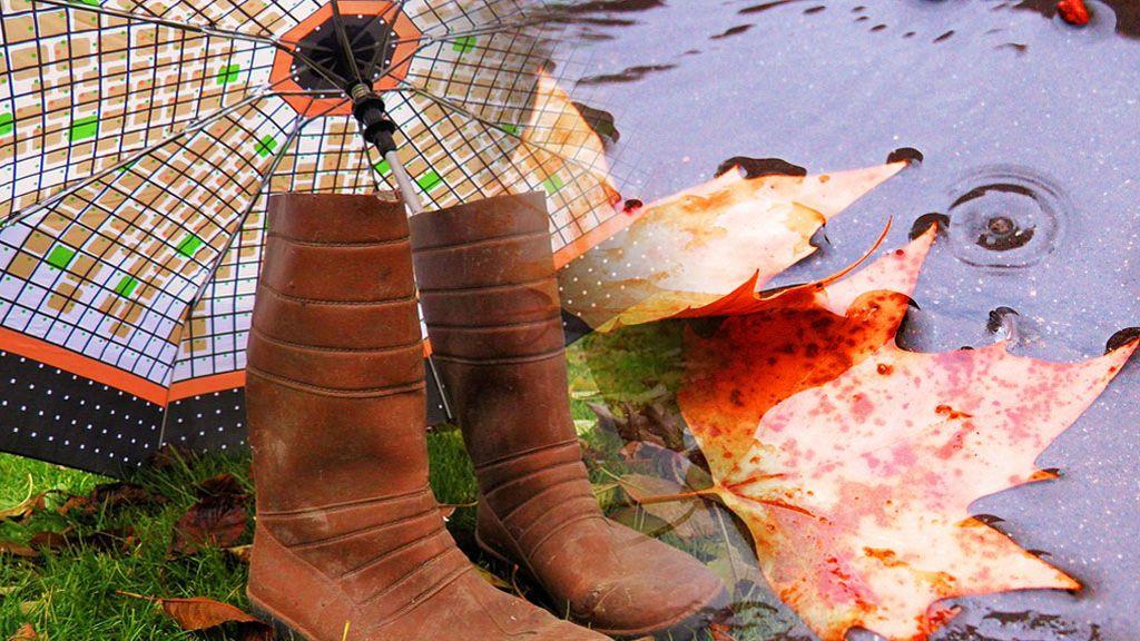 La dana descargará con fuerza el domingo: vas a llover en todo España