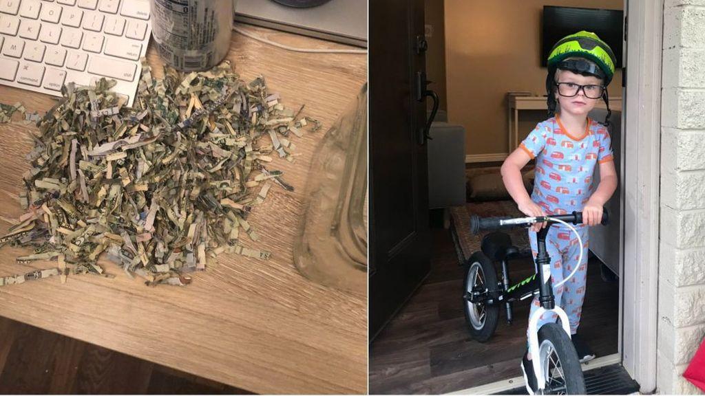 Un niño de 2 años pasa por la trituradora de papel los ahorros de sus padres