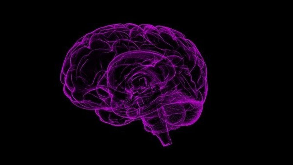 Las resonancias magnéticas revelan cómo se comporta el cerebro ante una comprar