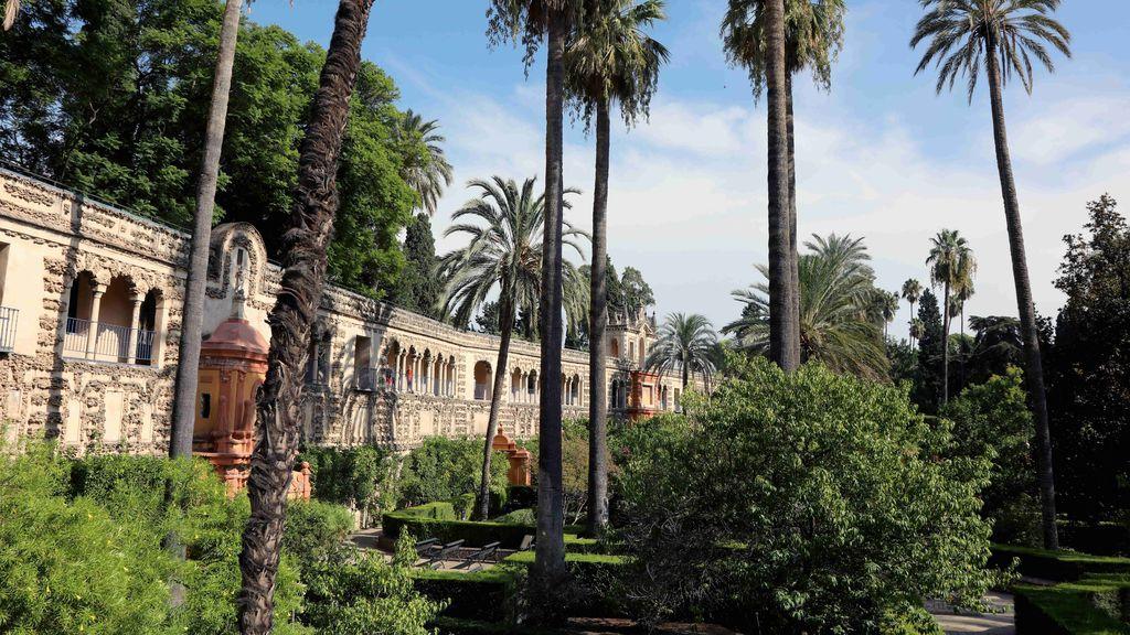 El Ayuntamiento de Sevilla denuncia el vídeo porno rodado en el Alcázar