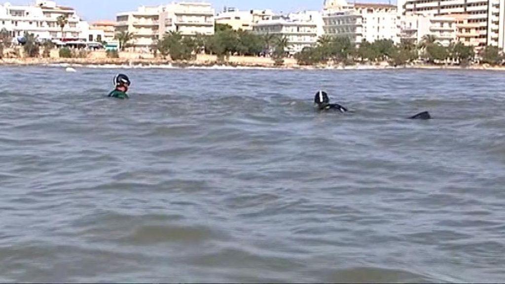 Los agentes peinan el torrente en busca del niño desaparecido por la riada