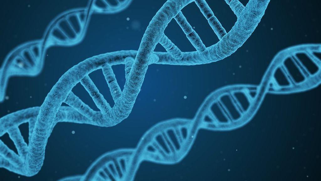 El ADN, la base de datos que puede delatarnos