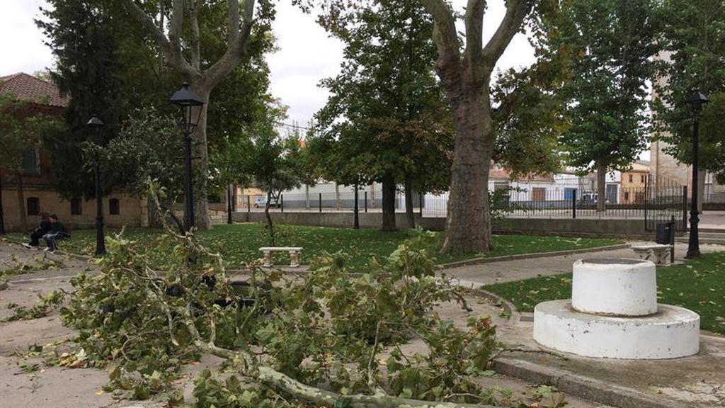 Primeras imágenes del paso del huracán Leslie en la península