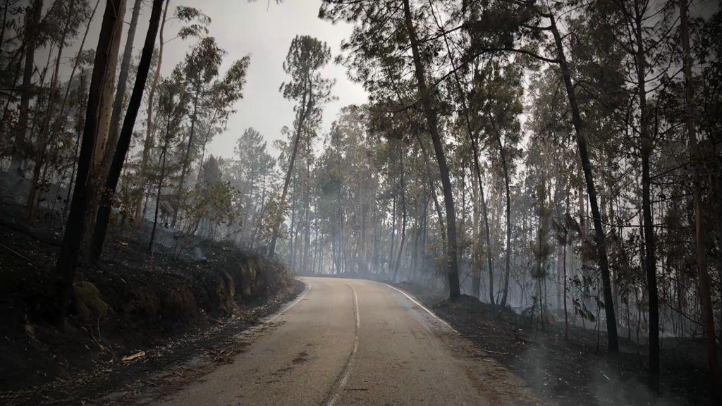 """Un incendio arrasador en el que los bomberos se sintieron impotentes: """"Todos los accesos se cerraron"""""""