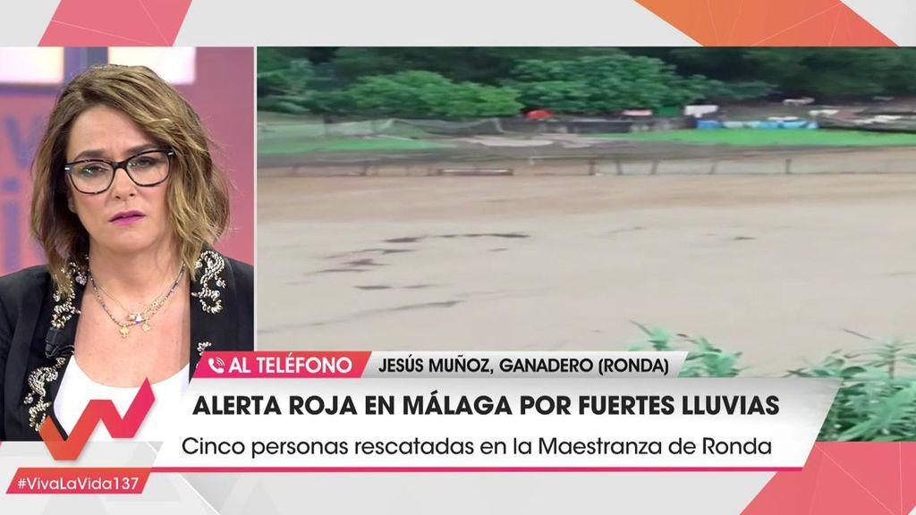 """Jesús Muñoz es ganadero en Ronda, Málaga: """"El agua se ha llevado a muchos de mis animales"""""""