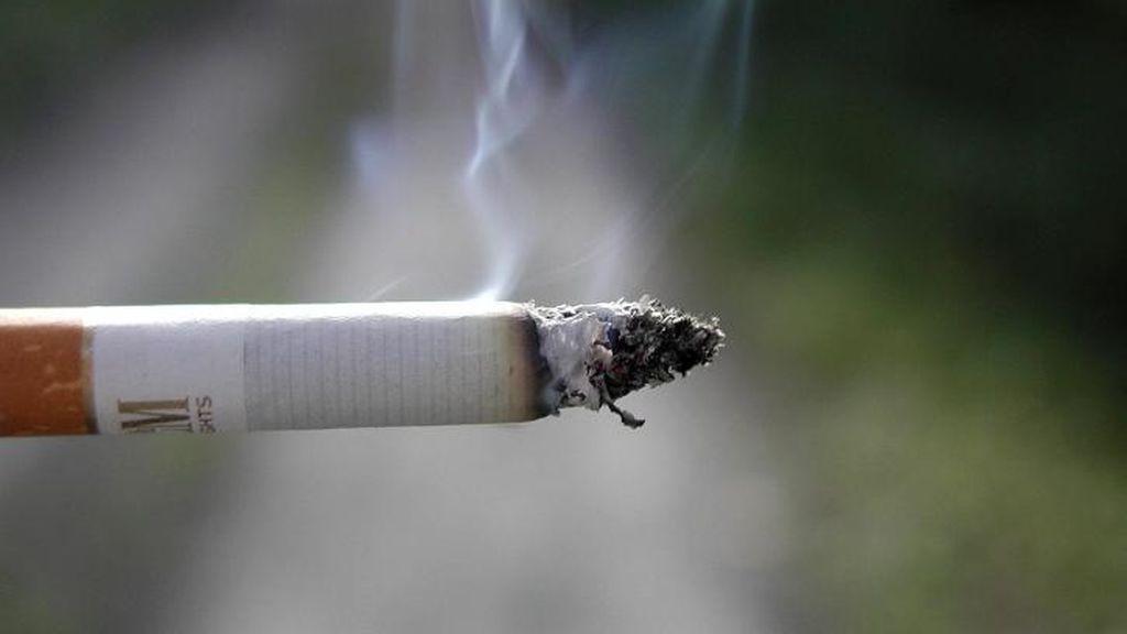 ¿Estás de acuerdo con prohibir fumar en las paradas de los autobuses?