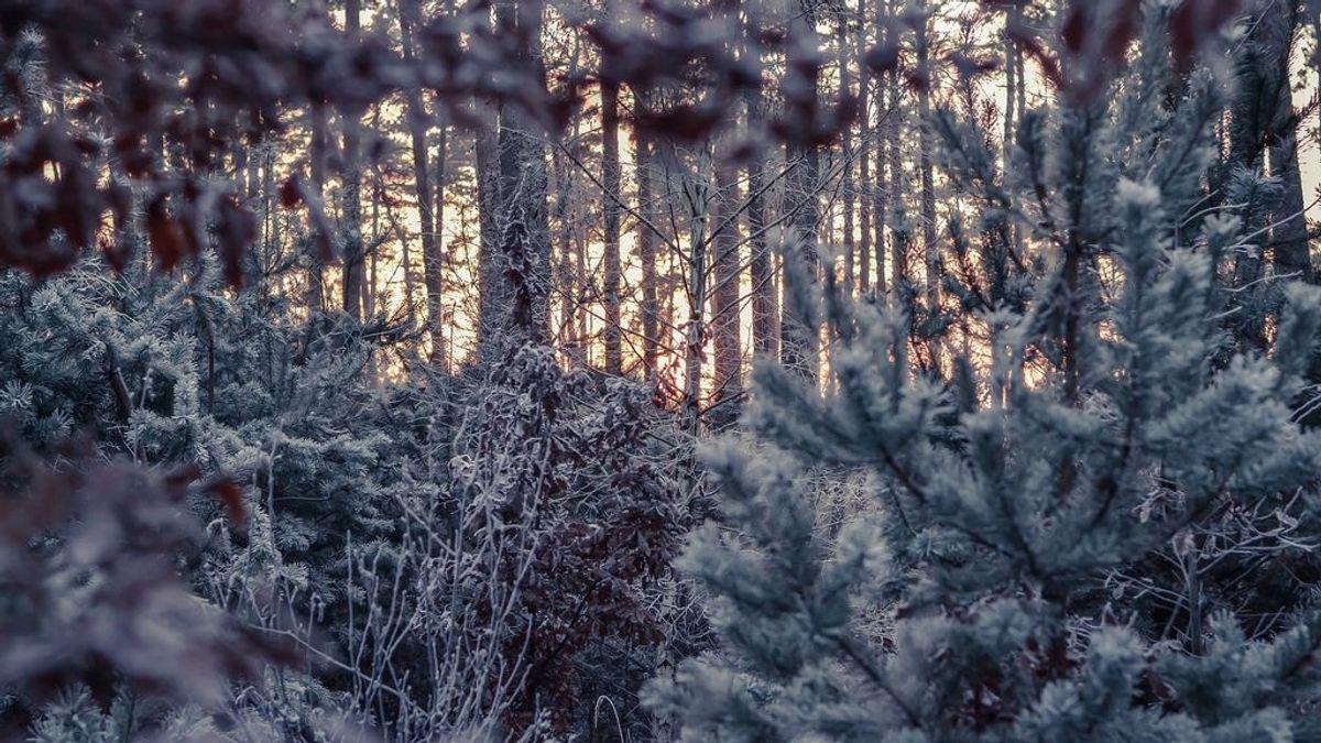 Hasta cuándo durara el temporal invernal de frío polar