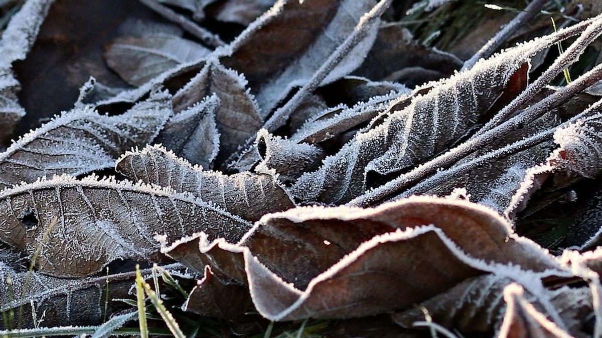 Sensación térmica de -10ºC: te explicamos por qué estás sintiendo mucho más frío del que hace