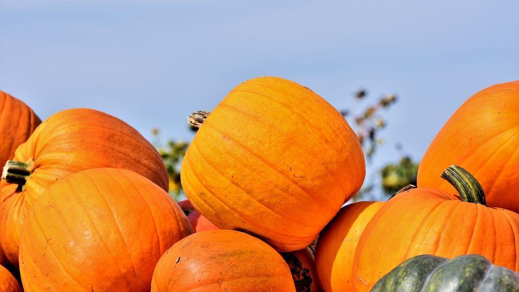 Predicción especial de la Aemet del puente de noviembre, de jueves a domingo