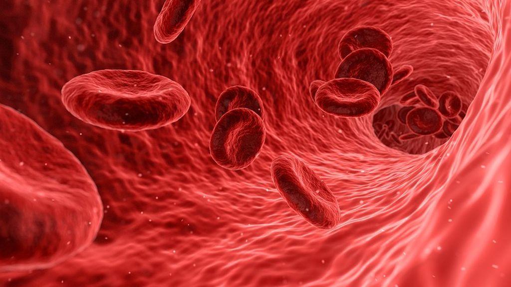 ¿Por qué es importante conocer tu grupo sanguíneo? Te lo explicamos en dos minutos