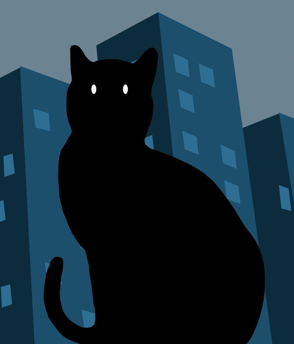 gato_encerrado_-1_dfee
