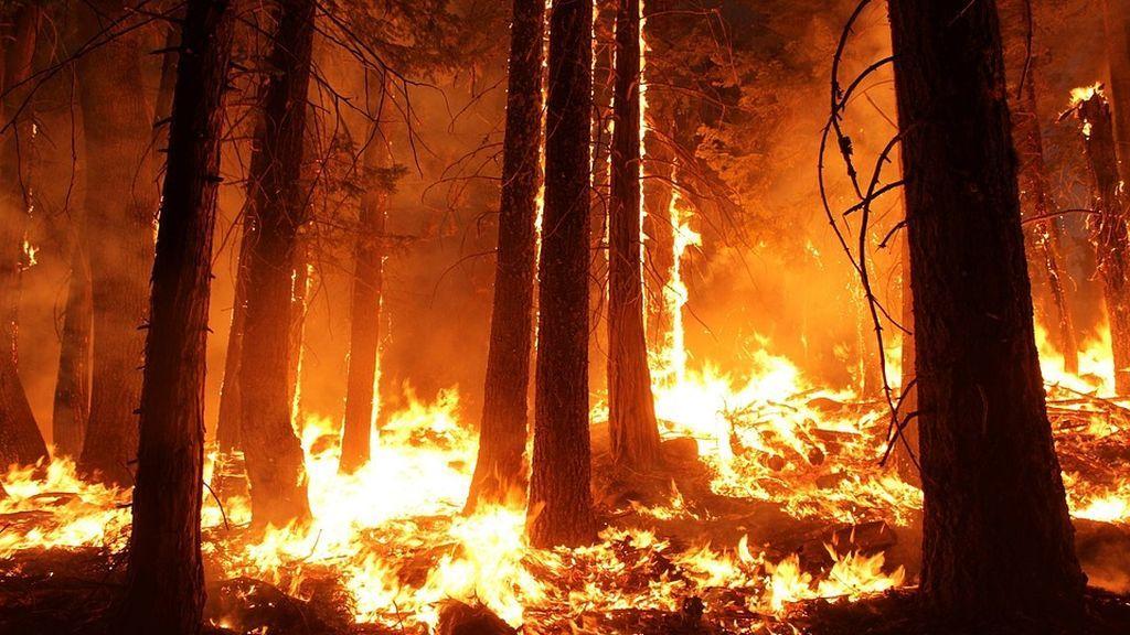 El cóctel explosivo que ha producido los fuegos de California