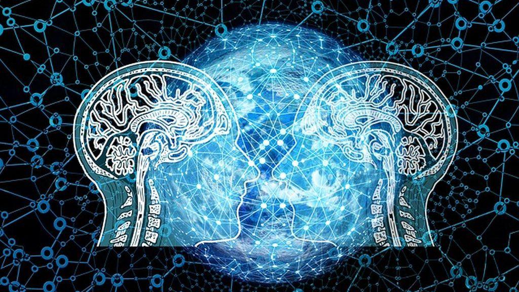 Diferencias entre el cerebro con autismo masculino y el femenino