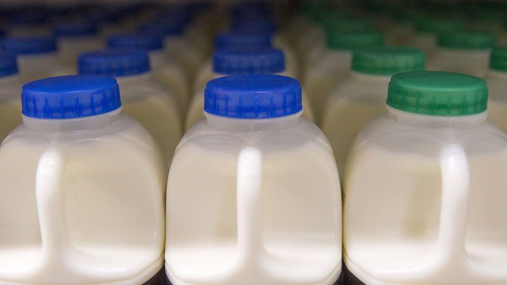 Guardar la leche en la puerta del frigorífico no es buena idea: te contamos por qué