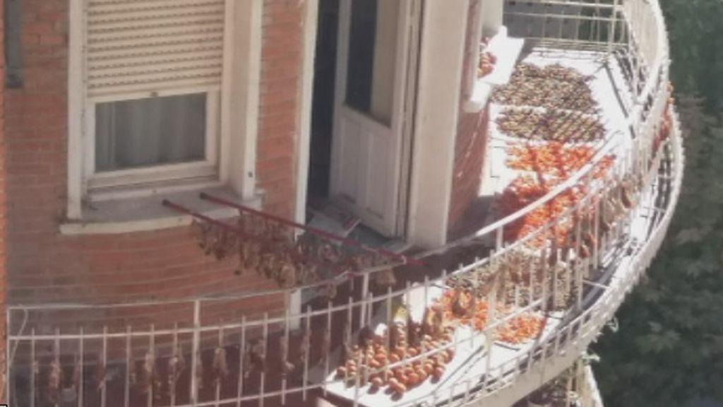 Animales muertos, al sol y secándose en un balcón-pollería de Albacete