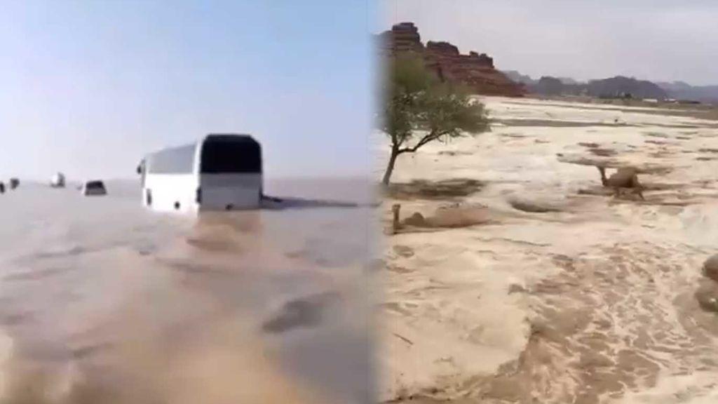Desierto inundado y camellos nadando: llueve en cuatro días lo mismo que en seis años en Arabia