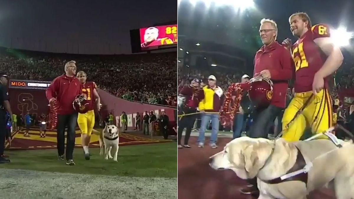 El último salto al césped, con su perro guía, de un jugador ciego de fútbol americano conmueve al mundo