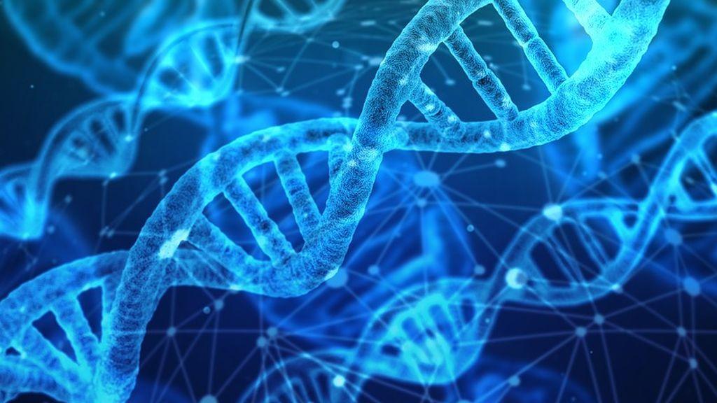Descubren 11 nuevos genes asociados a la epilepsia
