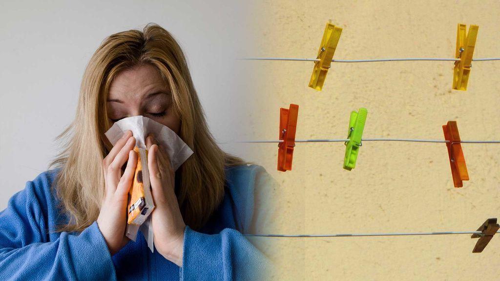 Asma, rinitis, infecciones: todo lo que puedes pillar por tender dentro de casa