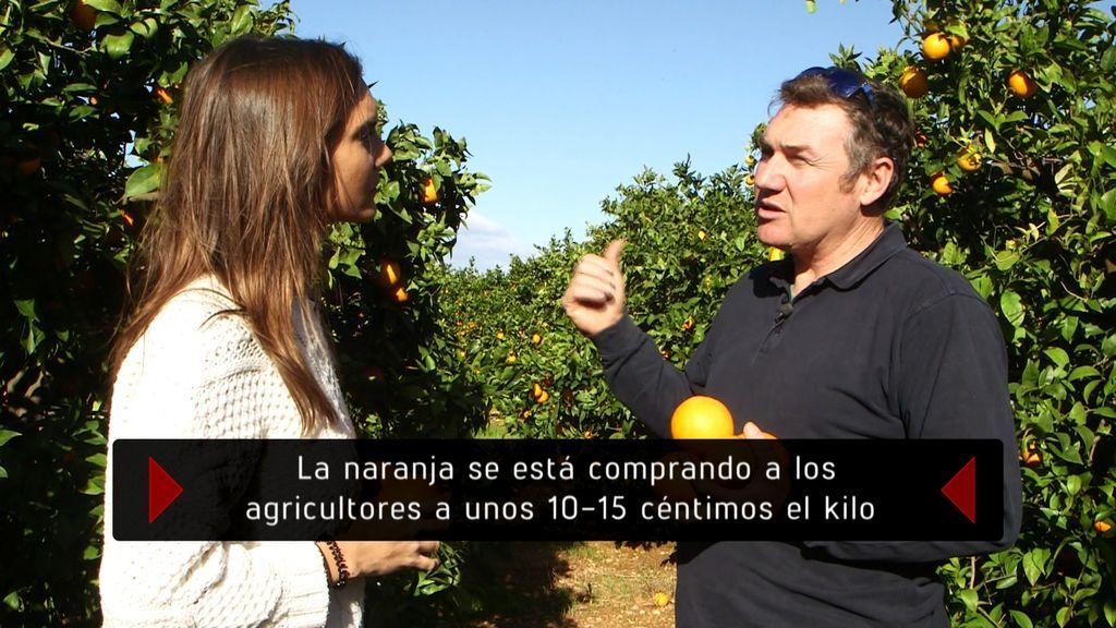 'En el punto de mira' habla con los agricultores sobre el precio de las naranjas.