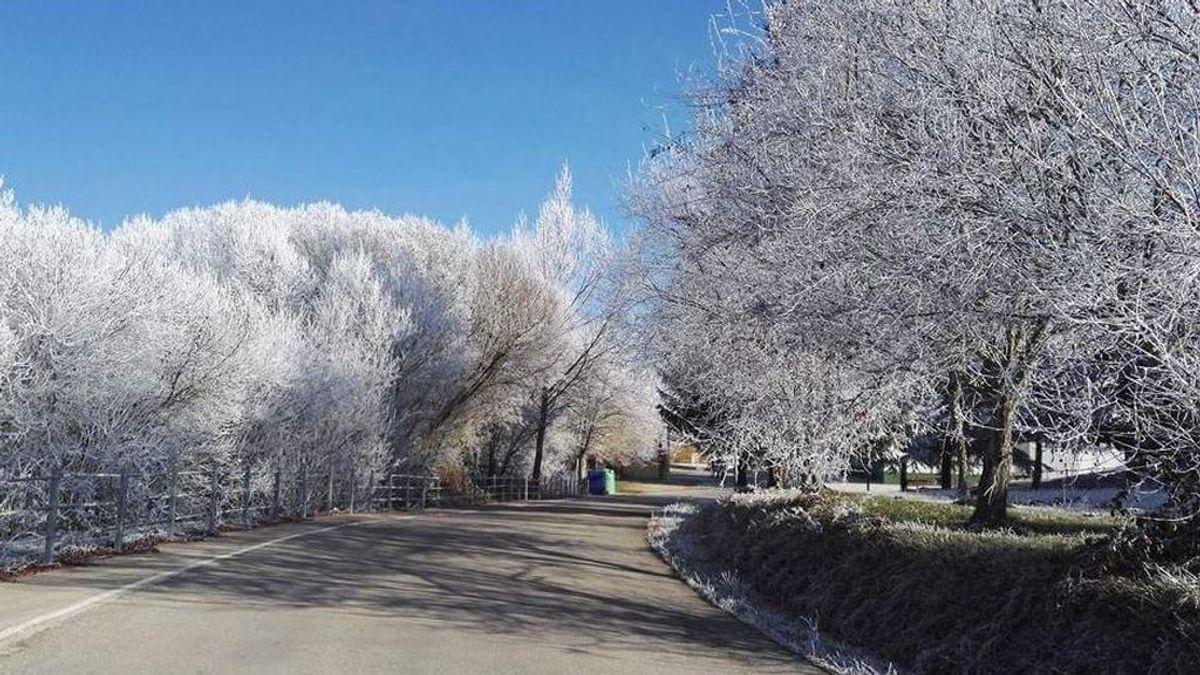 Llegan las primeras cencelladas del año: todo sobre uno de los fenómenos meteo más bellos del invierno
