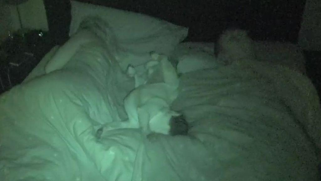 Cuando dormir con tu perro se convierte en una pesadilla