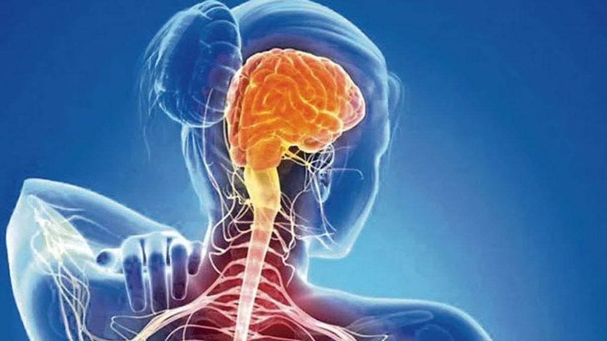 La esclerosis múltiple se duplica: Es  la primera causa de discapacidad en jóvenes