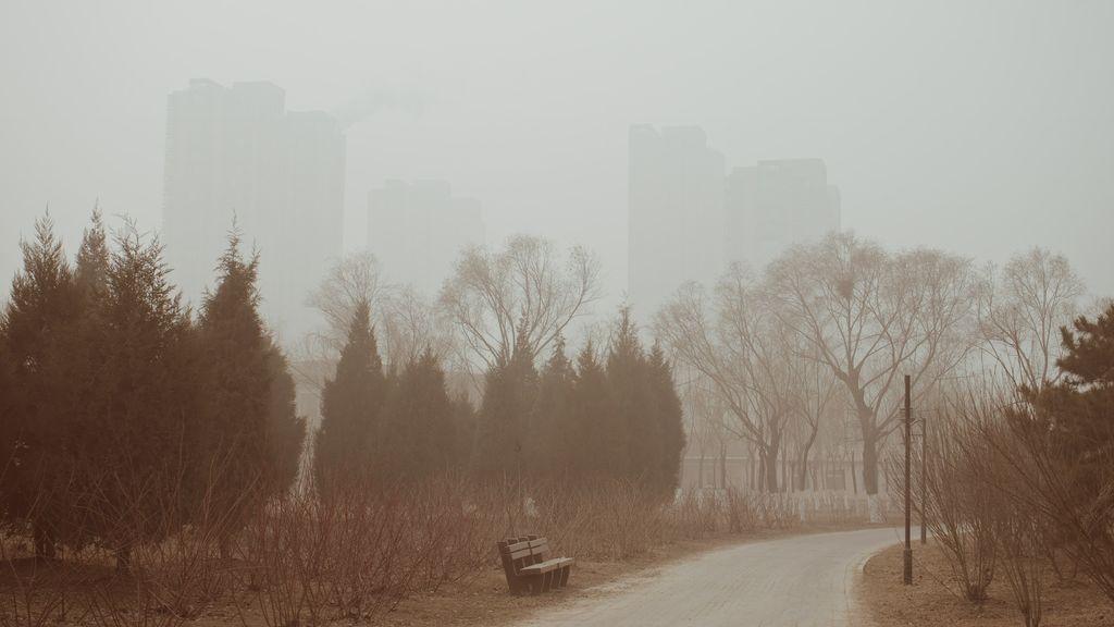Tres días seguidos sin ver el sol: por qué están apareciendo nieblas tan densas y persistentes