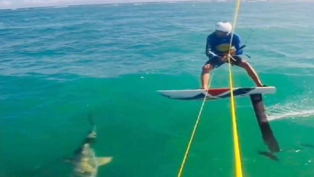 Choca con un tiburón mientras  hace kitesurfing