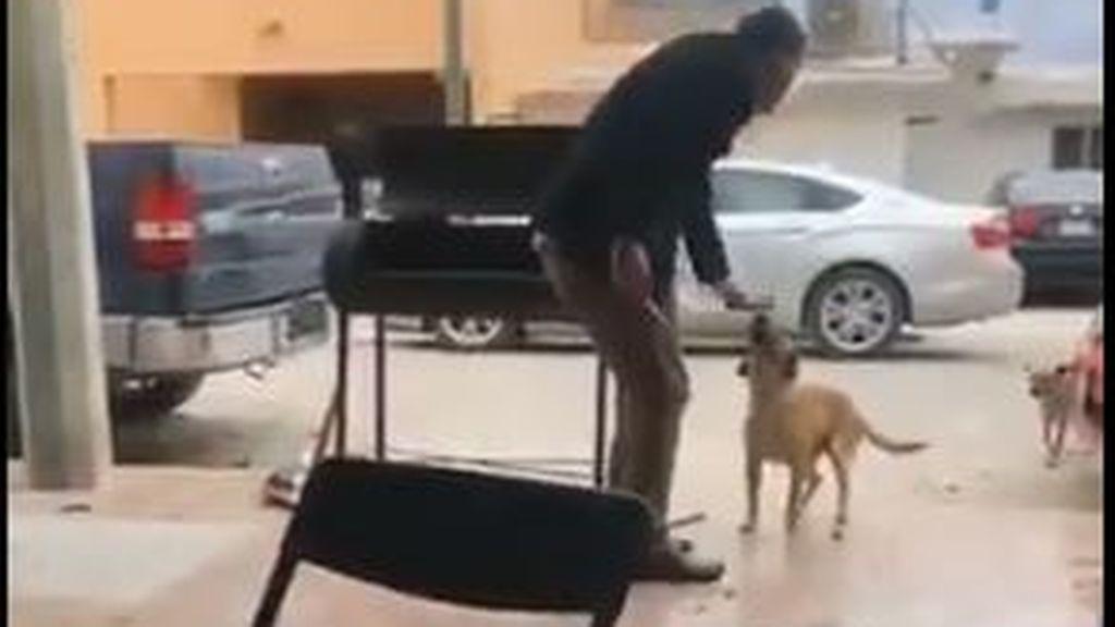 Un hombre en busca y captura en redes sociales por apuñalar a un perro en México