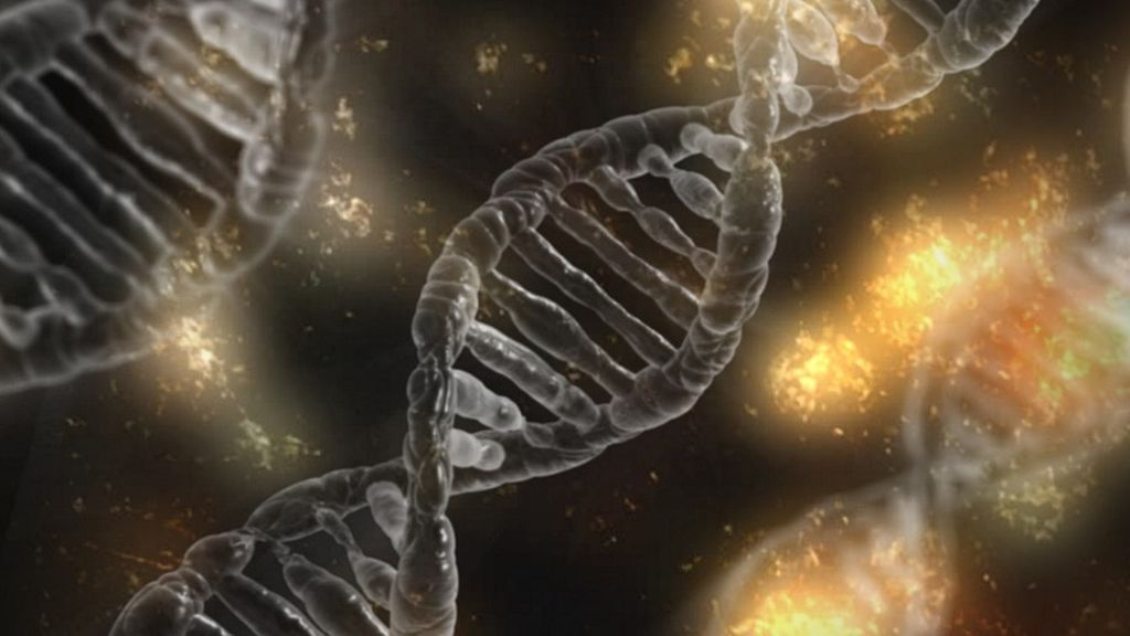 Los científicos localizan 124 variantes genéticas que nos llevan a tomar decisiones arriesgadas