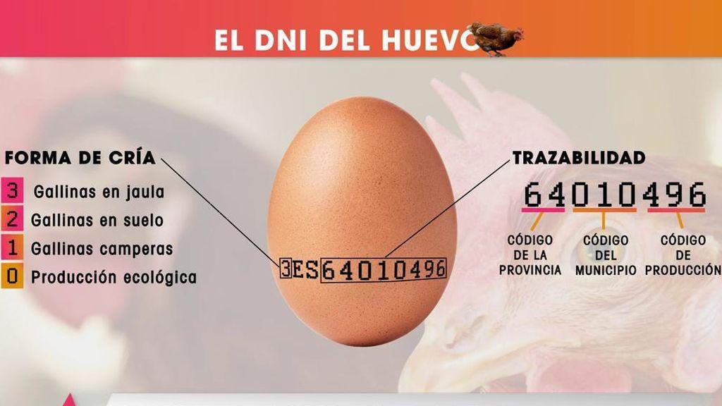 El DNI del huevo: te enseñamos qué  significan los números de su cáscara