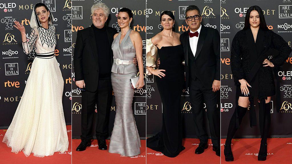 La alfombra roja de los Premios Goya 2019, foto a foto