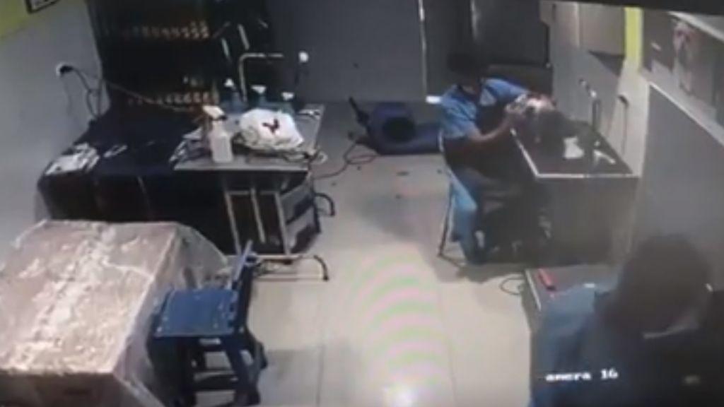 Reanima un perro al que había intentado matar en una clínica veterinaria