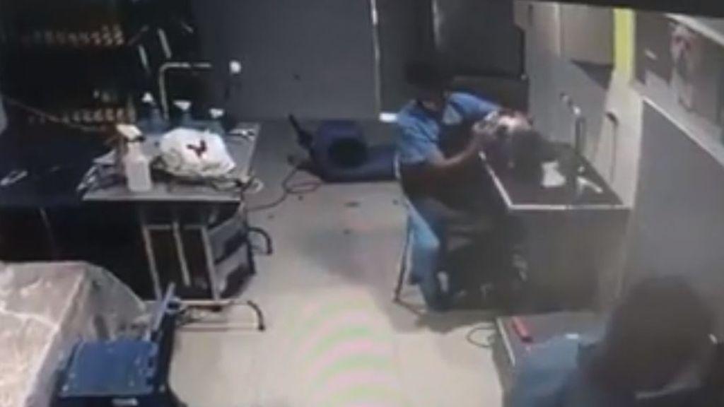 Golpea brutalmente a un perro para reanimarlo y salvarle la vida minutos después