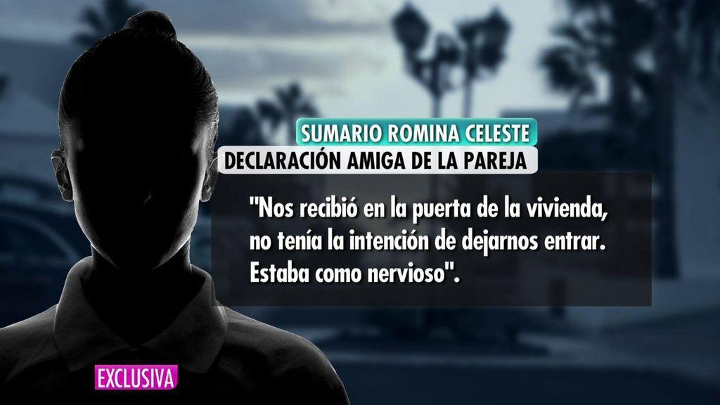 Declaración amiga de Romina