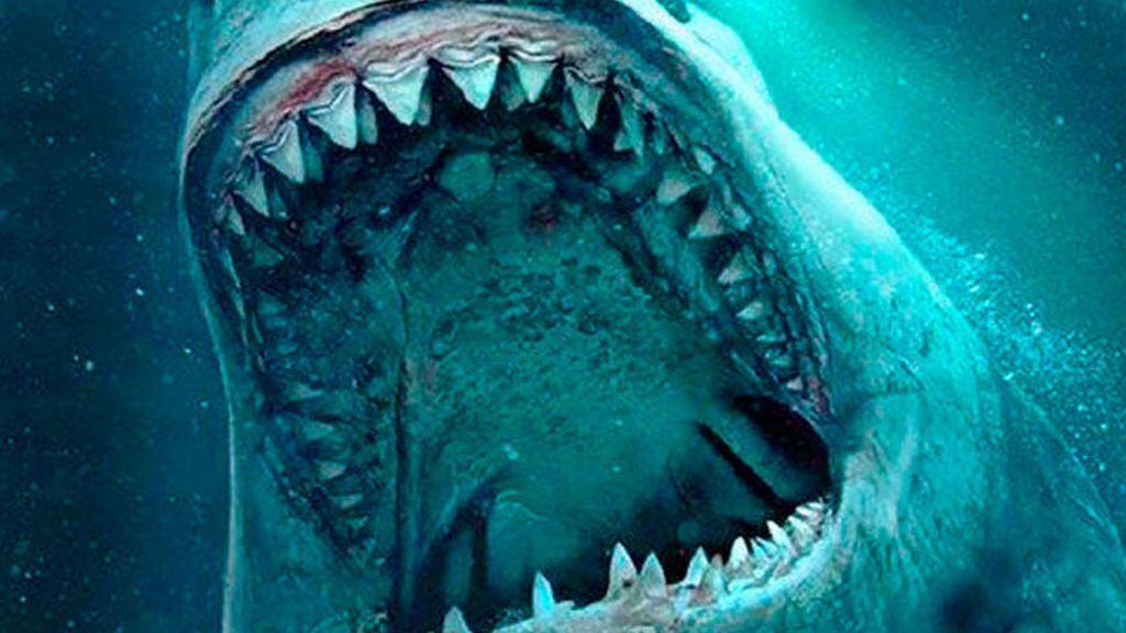 El gran tiburón blanco pudo haber exterminado al megalodon gigante
