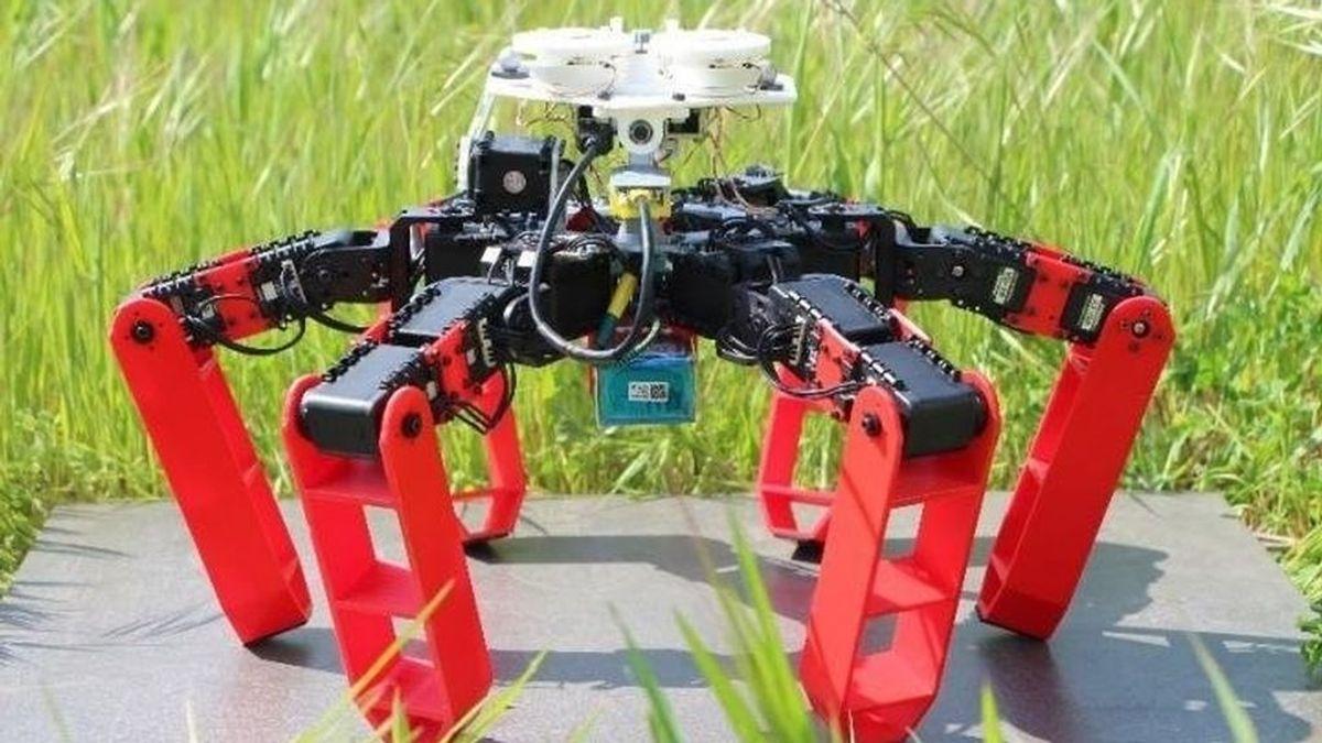 El primer robot que se orienta sin GPS y está inspirado en las hormigas