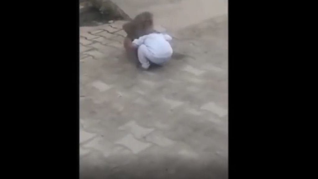 Mono obliga a un bebé de dos años a que juegue con él