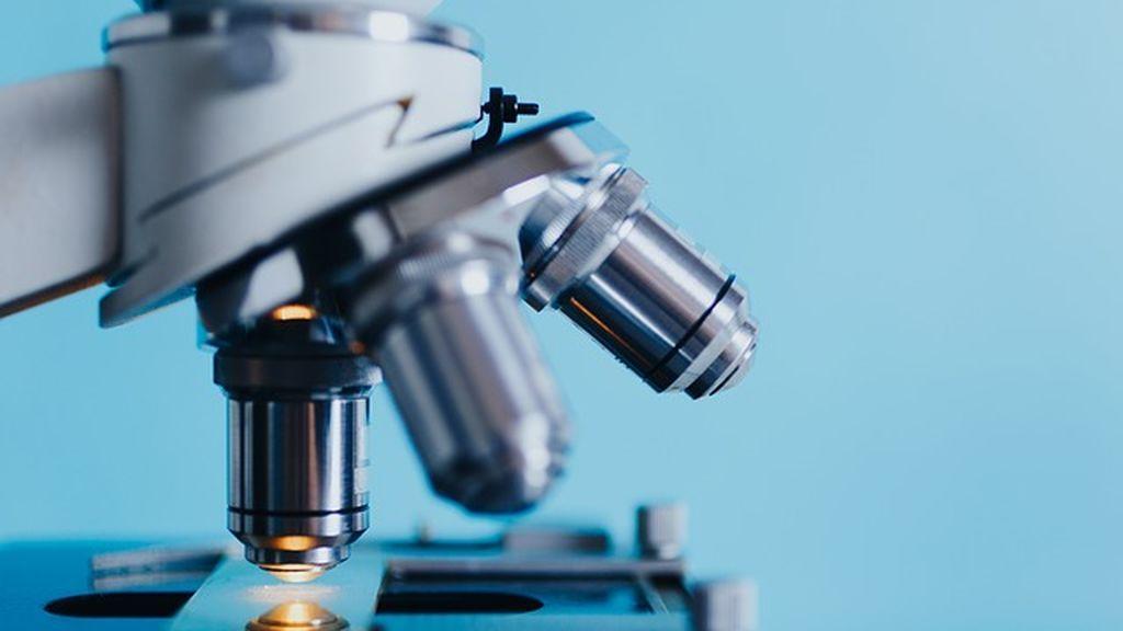 Científicos españoles quieren implantar modelos más efectivos en las terapias contra el cáncer cerebral infantil