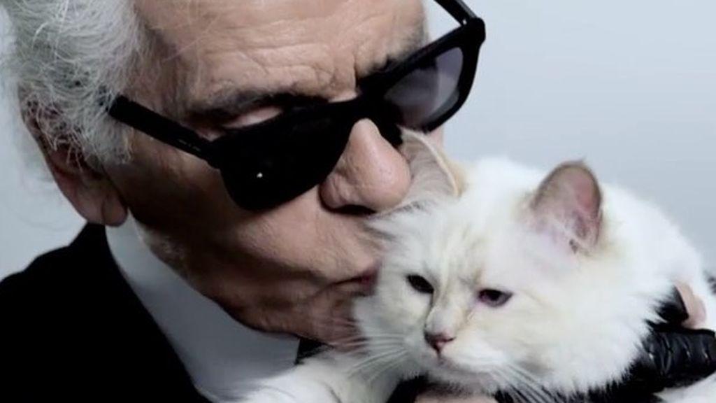 Choupette, la gata y heredera de la fortuna de Karl Lagerfeld, se despide de su padre
