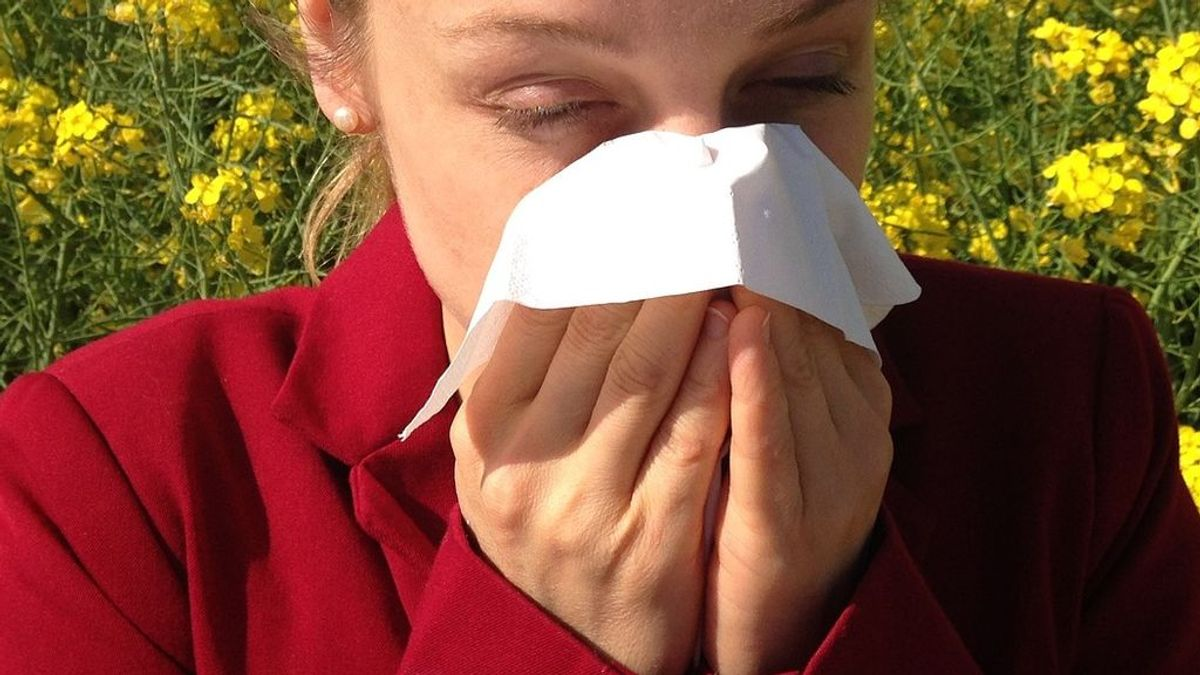 Cuatro claves para diferenciar un resfriado de una alergia primaveral