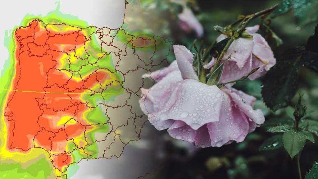 Cambio de tiempo: saca el paraguas, dos borrascas dejan lluvias generalizadas
