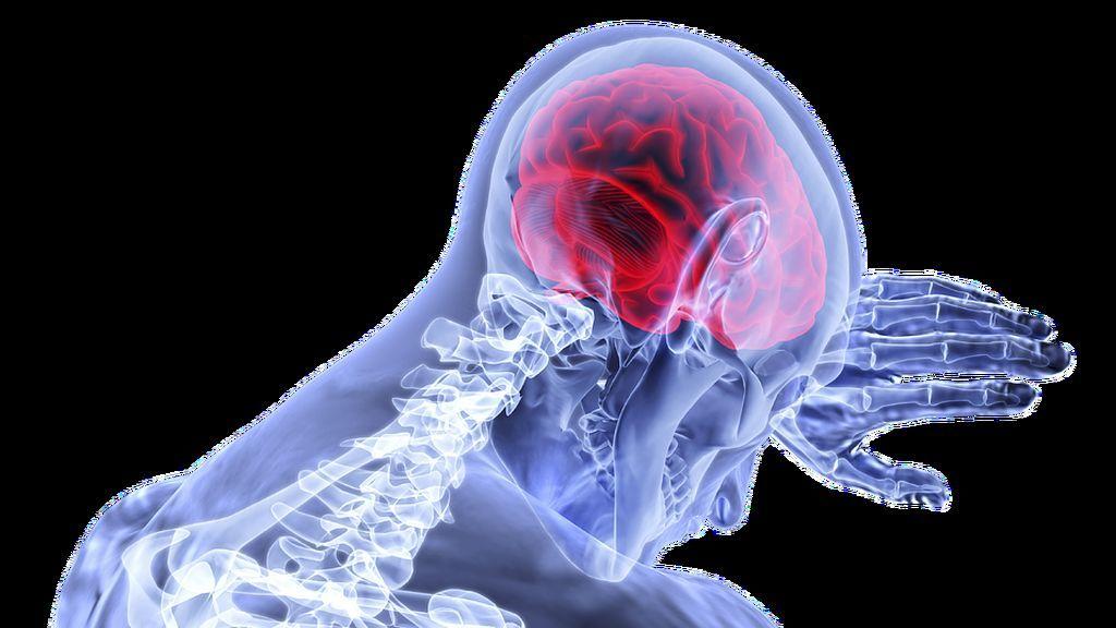 ¿Por qué el cerebro olvida hacer algo ya planeado?