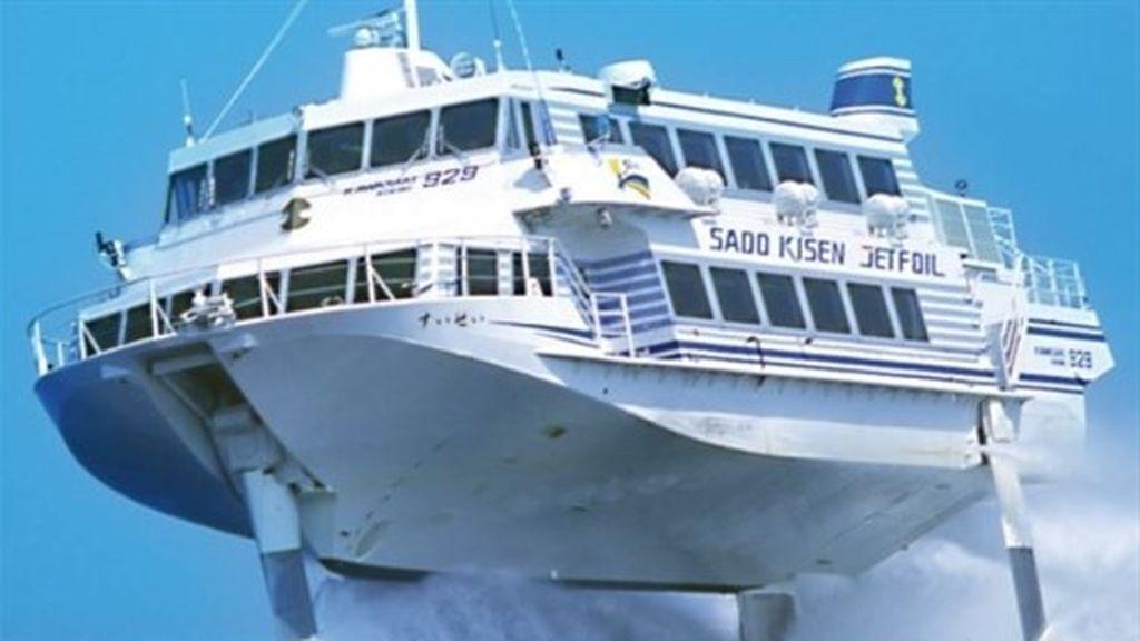 Choque de una ballena y un ferry